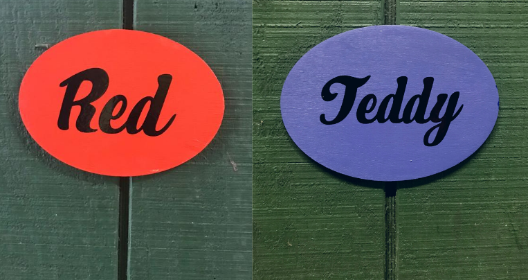 two horse stall signs with names
